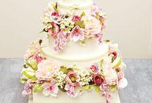 Moja svadba snov