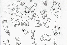 Drawing cats / by Alicia Davies