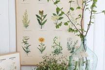 Botanic style