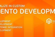 Magento Customization