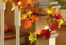 Fall / by Cortney M.