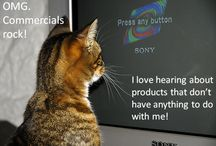 Cats & Marketing / Marketers can actually learn a lot from cats. Take a look.