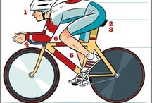 Cycling Manager Online Game