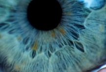 Eye See You  / by Carla Sofía