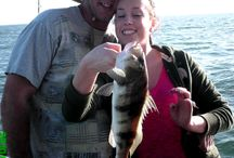 Deep Sea Fishing San Diego / Fish Taxi deep sea fishing charter in San Diego County