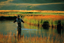 Fly fishing-Timeout