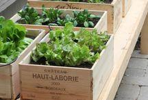 jardinage et exterieur