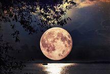 Ay Işığı (Moon Shine)