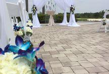 Blue orchids / wedding flowers