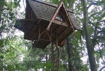 Don't you desire a Tree House?