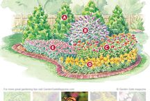 Butterfly Gardens / Different types of butterfly gardens