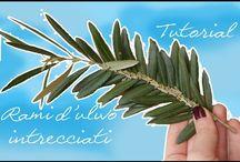Palma di ulivo