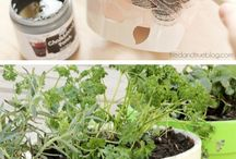 Gardening Ideas and craft