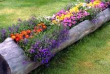 Garden....Outdoor ideas
