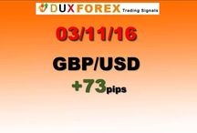 Daily Forex Profits Performance 03/11/16 - Dux Forex
