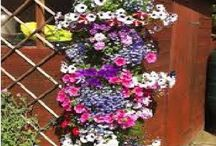Vertical flower pots
