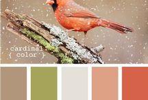 Combinando cores