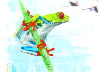 #Costa Rica#Cartes Postales#Voyage#Carnet de voyage#illustrations