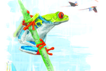 #Costa Rica#Cartes Postales#Voyage#Carnet de voyage#illustrations / by Steph Solune