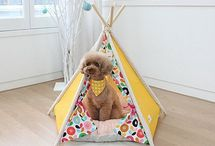Pet Furniture & Ideas