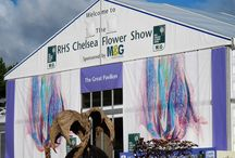 Signage | RHS Chelsea Flower Show 2015 / Like what you see? Find out more at http://bit.ly/2veeRyg