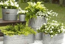 Boîtes pour plantes