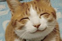 Happy♪ Happy♪ Smil !!