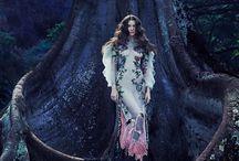 fairies & enchanted