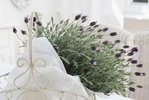 Letní a jarní dekorace :))