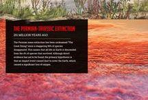 Evolution ans Extinctions