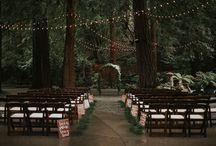 wedding videography / wedding videography and photography