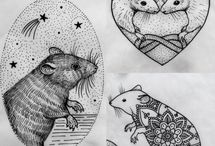 myšáci