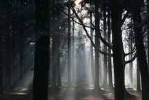 piekfotografie (photography) #piekfotografie / #naturephotography #photography #landscapephotography