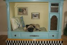 Dog bed / by Malinda Isbell