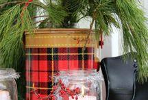 Winter Decorating / by Kate Rezac