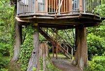 Cases dins d'un arbre / Treehouse / by Tressy Vilas
