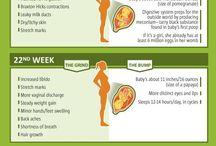 Maternidad informacion