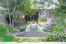 Garden and Landscape Ideas