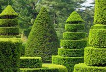 Topiary Gardens...