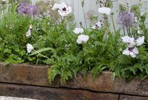 Small garden schemes
