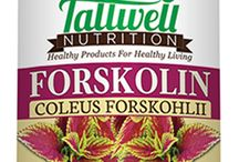 Forskolin Extract Fat Loss Supplement / 100% Pure Forskolin supplements by Tallwell Nutrition are an all natural way to lose weight quickly.Recent medical studies have shown that this great product increases metabolism, energy and promotes healthy weight loss. Forskolin Extract actually stimulates and releases the fatty acids from adipose tissue or fatty tissue and increases the thermogenesis breakdown and removal of our bodies stored fat cells. Free Shipping; Try our Forskolin today at www.tallwellnutrition.com