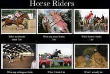 Interpretations / by Horse Interests
