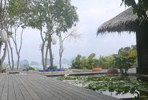 Six Senses Yao Noi / Un petit coin de paradis 2011. Au cœur de la baie de Phang Nga, en Thaïlande, Koh Yao Noi est une île méconnue, paisible. Restée authentique malgré la proximité de Phuket, à une heure de bateau.