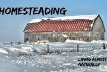 Homesteading / Homesteading