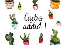 Pochettes Surprises / Retrouvez toutes nos pochettes surprises insolites dédiées aux adultes !