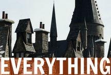 Nerd Life / Harry Potter, Disney