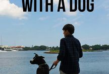 Traveling With Dogs / Pet Friendly travel tips for going places with your dog - dog friendly restaurants, tips for traveling in the car with dogs, dog friendly cities and places to visit, etc.