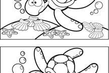 Vodné živočíchy - Korytnačka