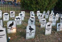 Conservation graveyard