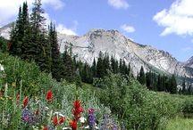 Wyoming-USA